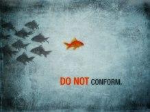 do-not-conform-fish